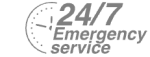 24/7 Emergency Service Pest Control in Ponders End, Enfield Wash, EN3. Call Now! 020 8166 9746